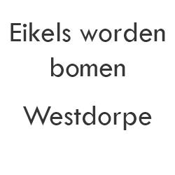Eikels Worden Bomen Westdorpe